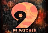 99 Patches Funky Bass & Grooves WAV